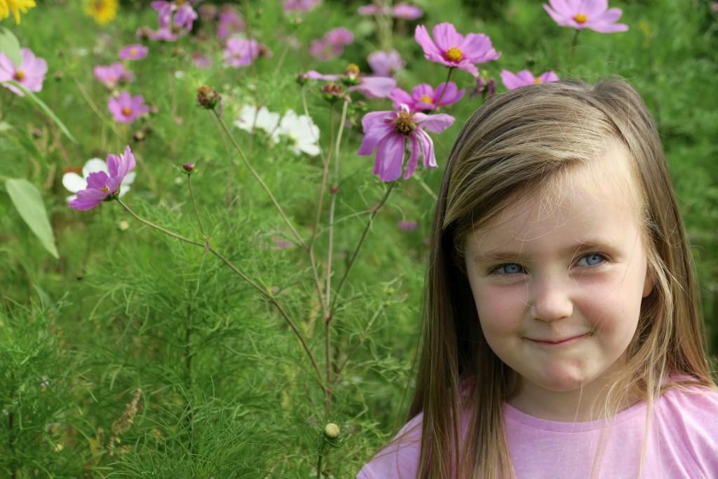 wild flowers, cheltenham, florence