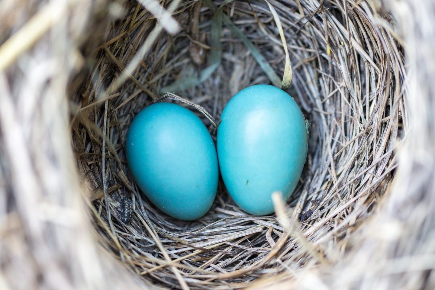 Building a Retirement Nest Egg in Three Simple Steps