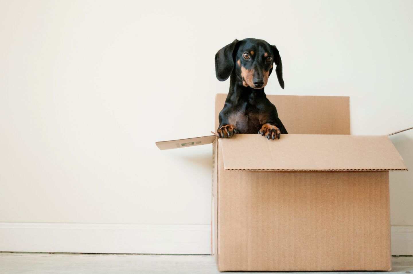 Four Things to Consider When Planning a Big Family Move